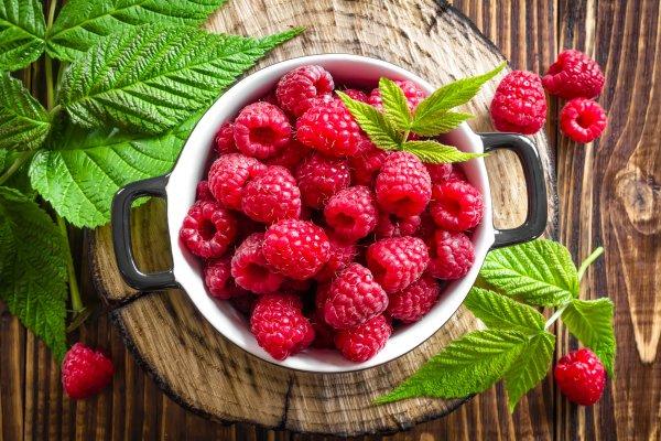 Ученые: Употребление малины влияет на снижение риска появления сердечных болезней