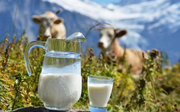 Роскачество нашло ряд нарушений в ходе проверки молока