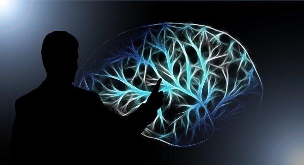 Ученые назвали обманывающие людей ловушки мозга