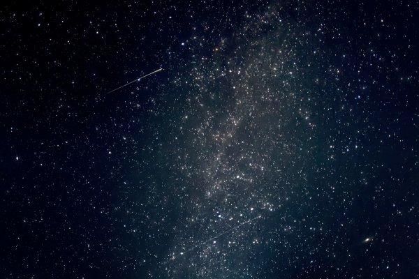 Ученые: космос влияет на объем мозга
