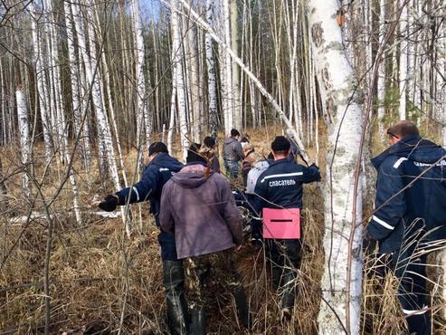 «Только бумаги заполняли»: жители Ипкуля возмущены тем, как полиция отреагировала на сообщения о заблудившейся в лесу женщине