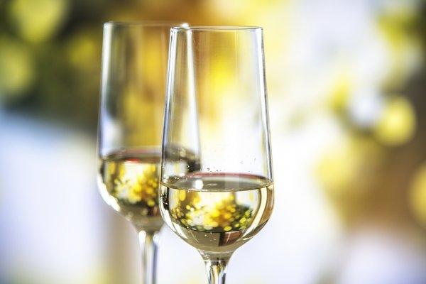 Вино без похмелья: В Великобритании продают инновационный вид алкоголя