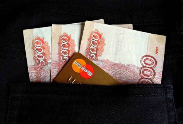 Названы самые высокооплачиваемые вакансии Петербурга в сентябре
