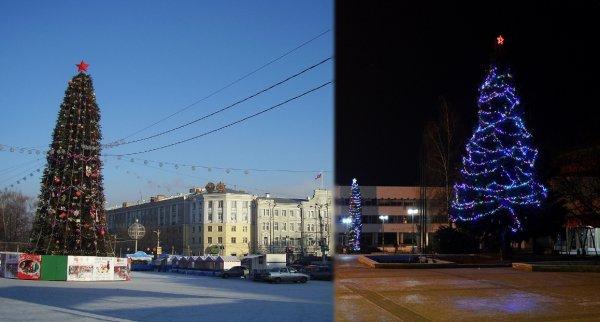 В Воронеже появилась первая новогодняя ёлка