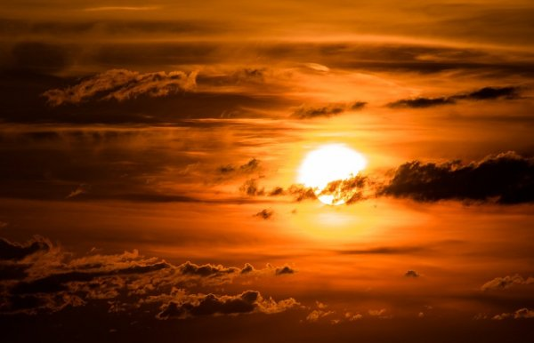 Ученые: Впервые за 11 лет начинается новый цикл активности Солнца
