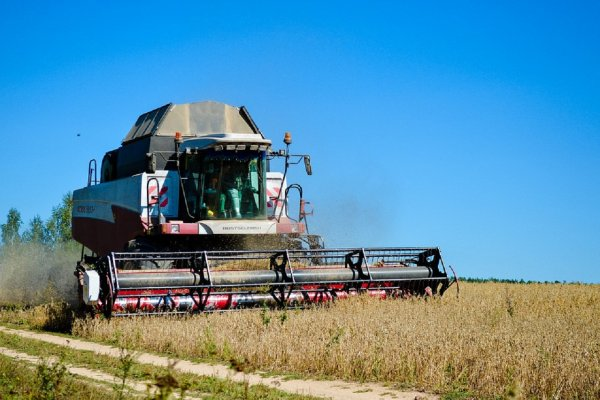 Найден эффективный способ сохранения урожайности по всему миру