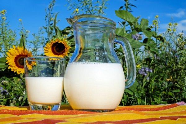 Названы пять «альтернативных молочных продуктов»