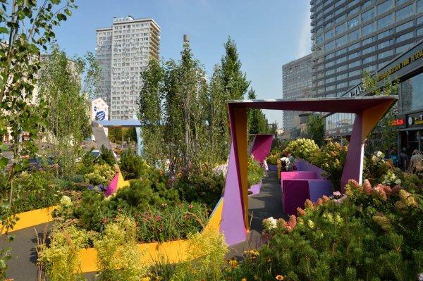 Округа Москвы, по словам Натальи Сергуниной, получат идеи ландшафтного дизайна благодаря «Цветочному джему»