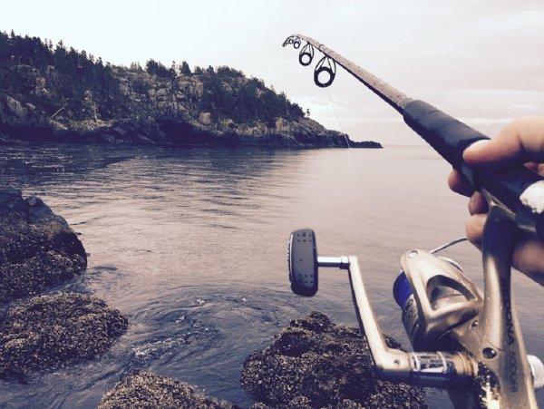 Депутаты Госдумы приняли закон о любительской рыбалке