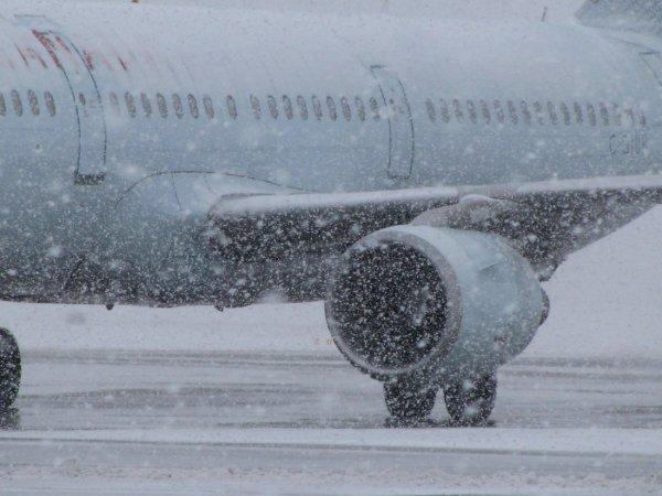 МИД РФ сообщил о временной отмене авиарейсов в США