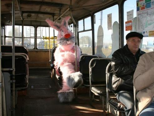 В России запретят высаживать детей без билета из автобусов и маршруток