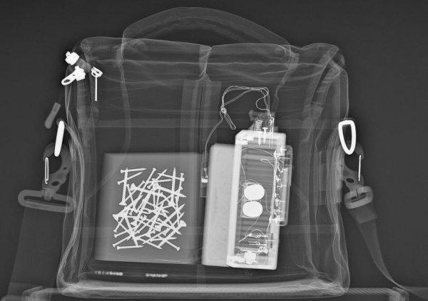 Российские ученые разработали мобильные сканеры для обнаружения запрещенных предметов