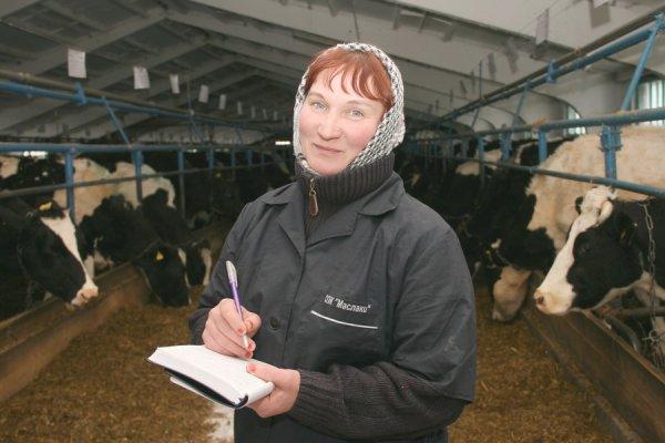 «Очередной митинг»: Трудящимся на сельском хозяйстве женщинам могут увеличить рабочий день