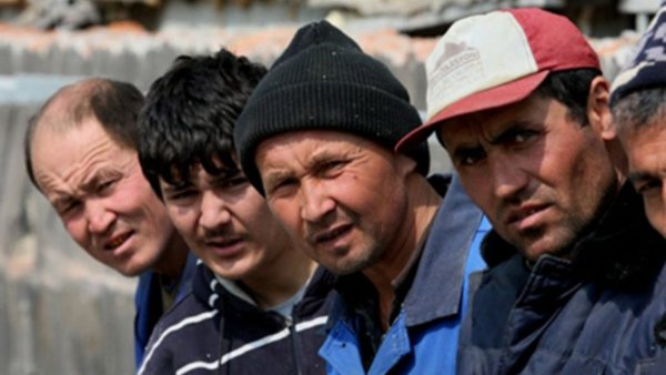 Гастарбайтер - на выход: Запрет на работу для мигрантов в Якутии может стать заразительным для других регионов РФ