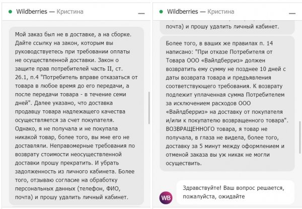 «Отменил заказ – оплати доставку»: Wildberries «повесил» на клиентку долг за отказ от товара