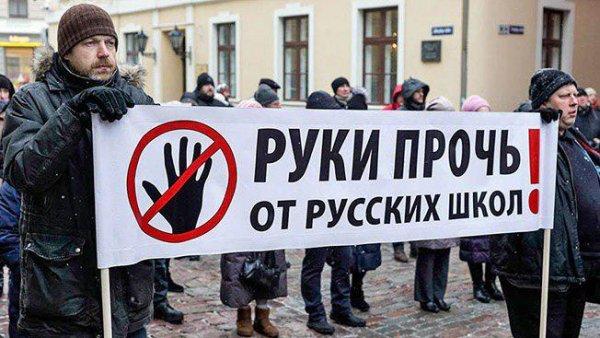 Запрет на обучение в школах Латвии на русском языке признан конституционным