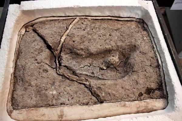 Мулдашев снова прав: Учёные нашли отпечаток ноги Атланта