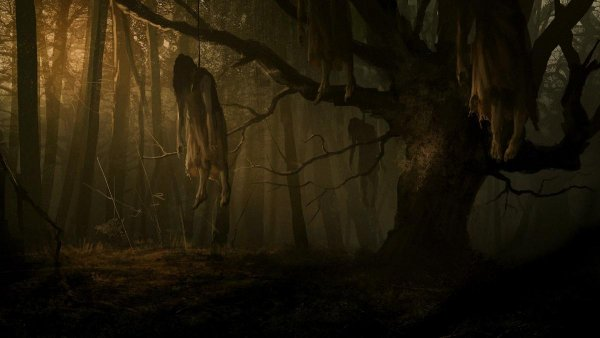 Дерево-душегуб: У знаменитого