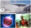 Мутация белка скроет вторжение одноглазых пришельцев