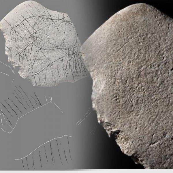 Во Франции обнаружили древний камень с изображением «безголовой лошади»