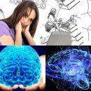 Когда память подводит: Назван самый эффективный способ запоминать информацию
