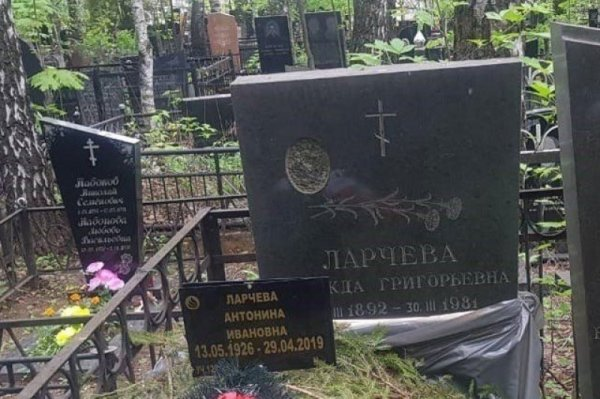 Мошенники ФБК ответят по закону за «рисовку» подписей на выборах в Мосгордуму