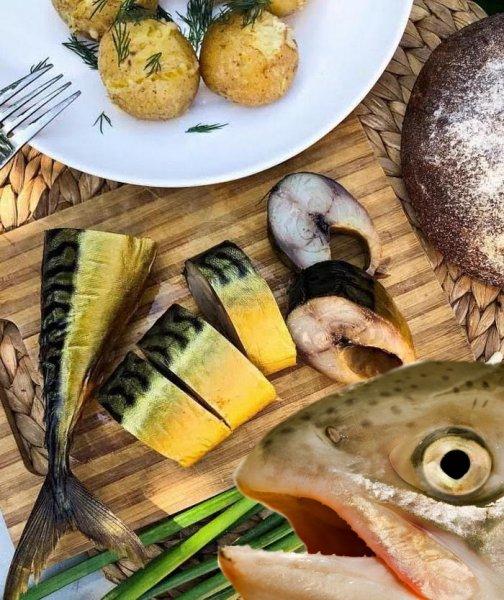 Дорогой лосось – не конкурент! Мраморная скумбрия в чайном рассоле за копейки
